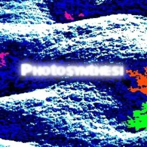 Image for 'Photosynthesi'