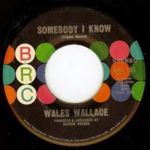 Image for 'Wales Wallace'