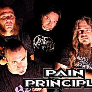 Image for 'Pain Principle'