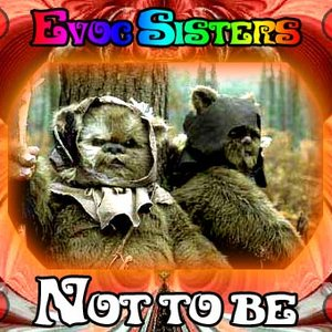 Image for 'Evoc Sisters'