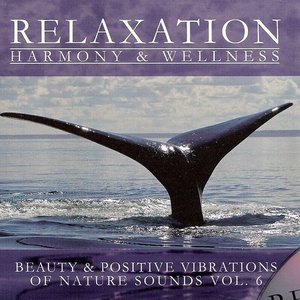 Image for 'Relaxation: Harmony & Wellness'