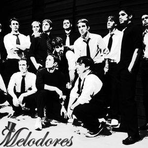 Image for 'Vanderbilt Melodores'