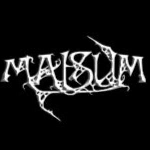 Image for 'Malsum'