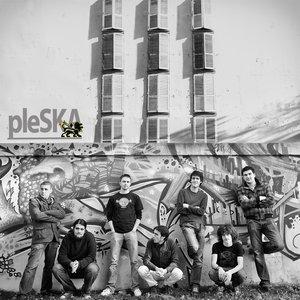 Bild för 'pleSKA'