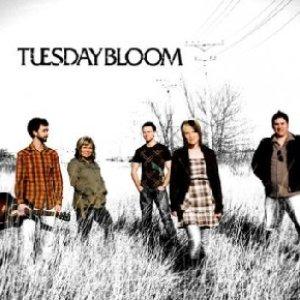 Bild für 'Tuesday Bloom'