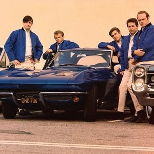 Bild för 'The Beach Boys'