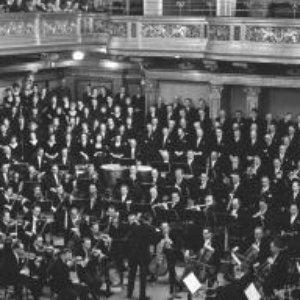 Image for 'Herbert von Karajan - Wiener Philharmoniker'