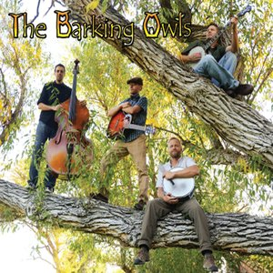 Image for 'The Barking Owls'