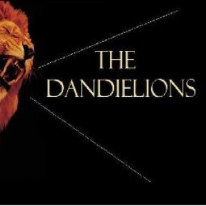 Image for 'The Dandielions'