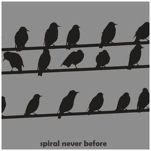 Image for 'Spiral Never Before'