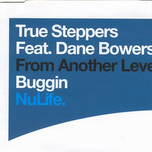 Image for 'True Steppers Feat. Dane Bowers'