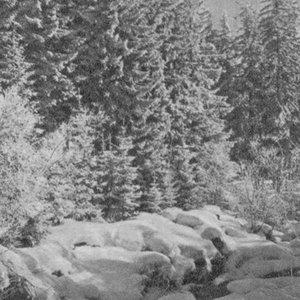 Image for 'Endlichkeit'
