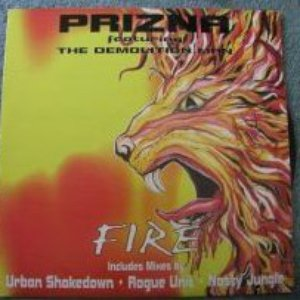Image for 'Prizna Feat. Demolition Man'