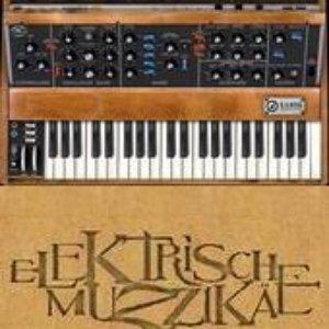 Image for 'Elektrische Muzzikae'