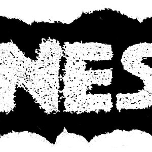 Image for 'NES'