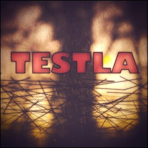 Image for 'Testla'