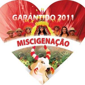 Image for 'Boi Garantido'