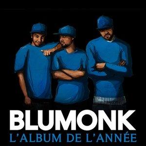 Bild für 'Blumonk'
