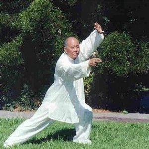 Bild für 'Tai Chi'