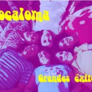 Bild für 'Xocaloma'