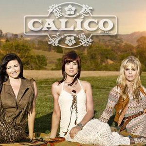 Image for 'CALICO The Band'