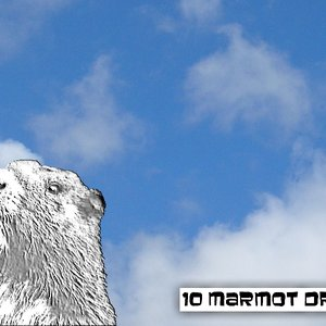 Image for '10 Marmot Drive'