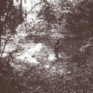 Image for 'Amaranthine Trampler'