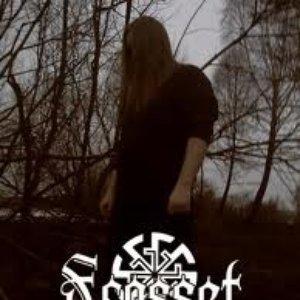 Image for 'Frosset Skog'