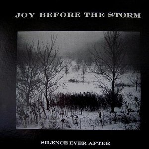 Image for 'Joy Before The Storm'