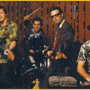 Image pour 'The Blue Hawaiians'