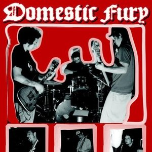 Image for 'Domestic fury'