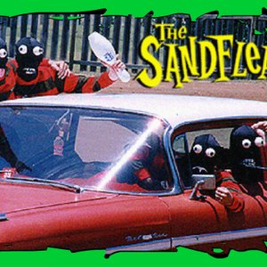 Image for 'The Sandfleas'