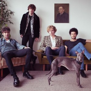 Immagine per 'The Kooks'