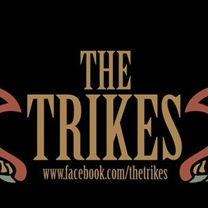 Image for 'The Trikes'