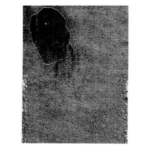 Image for 'Asasin Paranoic'