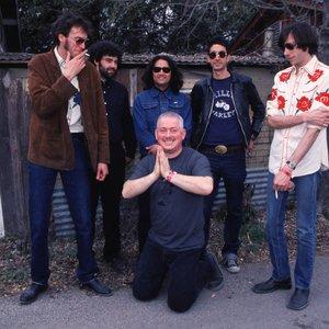 Image for 'Jon Langford and his Sadies'