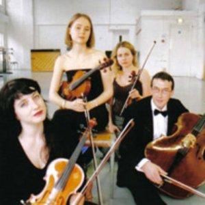Image for 'Aurora Strings'
