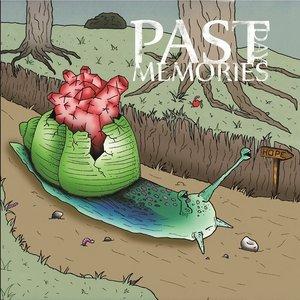 Bild för 'Past Day Memories'