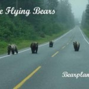 Image for 'The Flying Bears'
