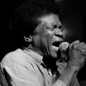 Image for 'Charles Bradley'