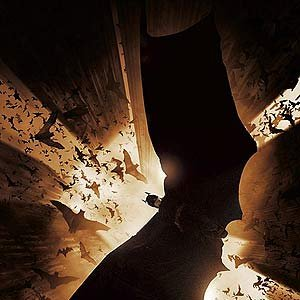 Image for 'Christian Bale; Liam Neeson; Katie Holmes; Gary Oldman'