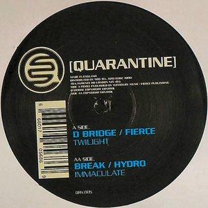 Image for 'D-Bridge & Fierce'