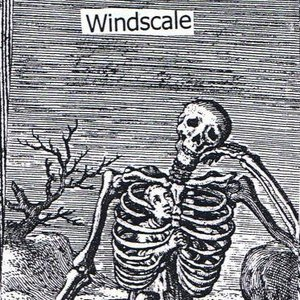 Image for 'Windscale'