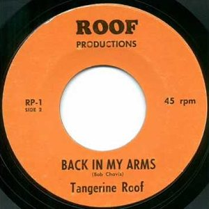 Image for 'Tangerine Roof'