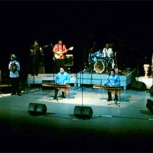 Image for 'La Orquesta de la Papaya'