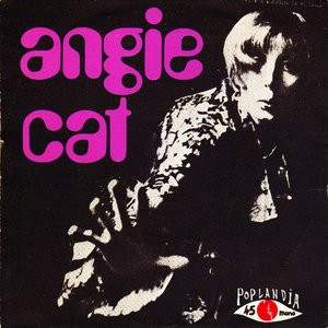 Image for 'ANGIE CAT'
