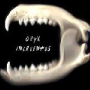 Imagem de 'Oryx Incruentus'