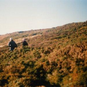 Image for 'Wool Strings'
