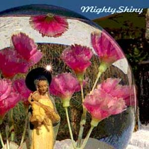 Image for 'Mighty Shiny'