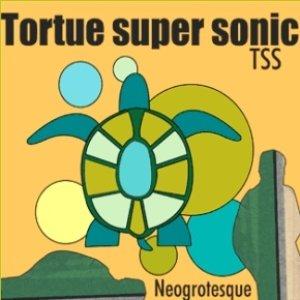 Immagine per 'TSS Tortue Super Sonic'